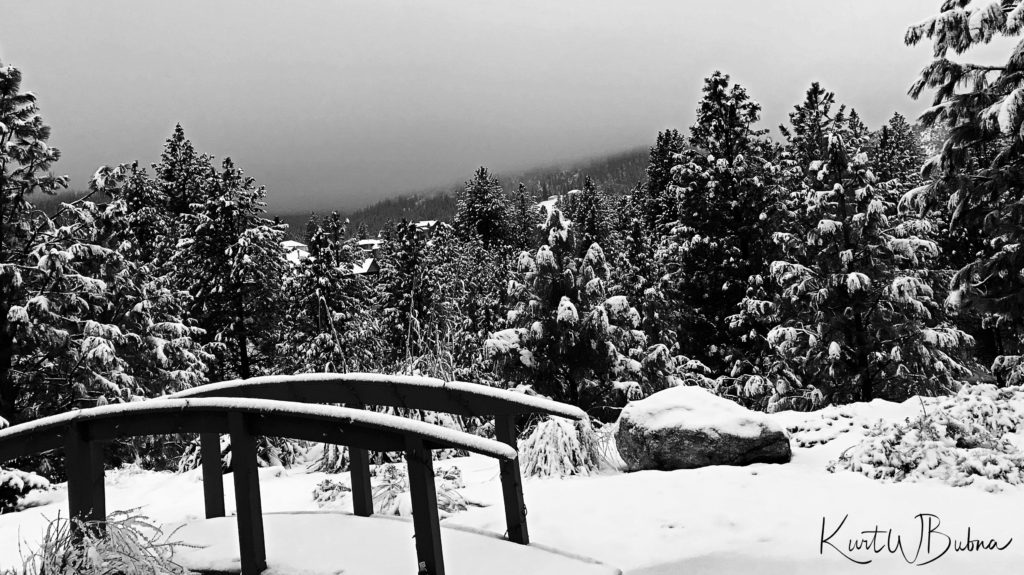 BW Snow-1513701384726